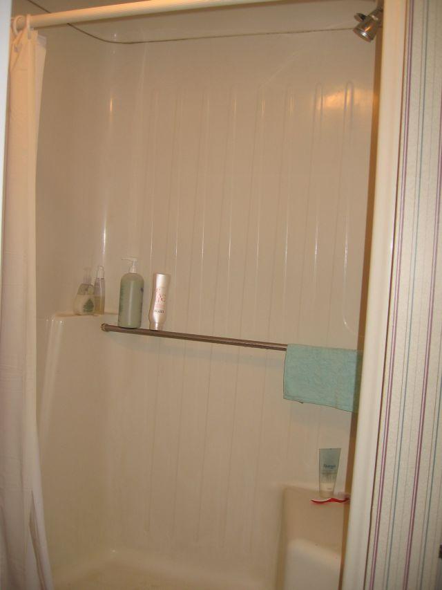 the basement half bathroom has a fiberglass shower very convenient